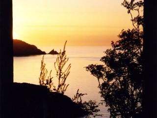 Corsica oranjeIIHR-s