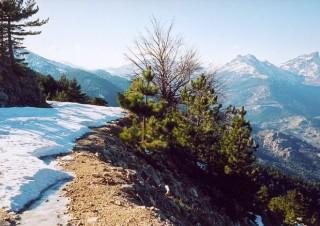 Corsica-jan02